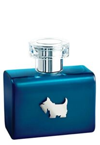 Lista De Perfume Ferrioni Hombre 8211 5 Favoritos