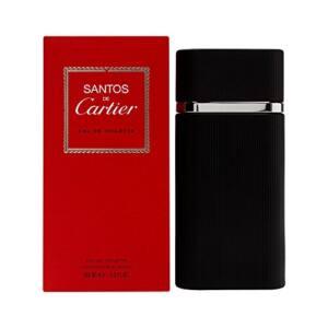 Opiniones De Cartier Santos Top 5